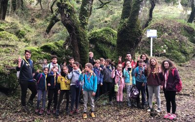 Acampada de otoño Grupo Scout