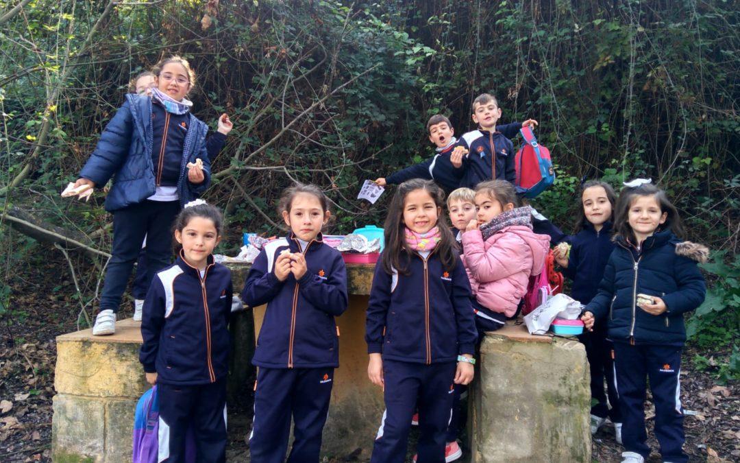 Descubrimos nuestro entorno natural