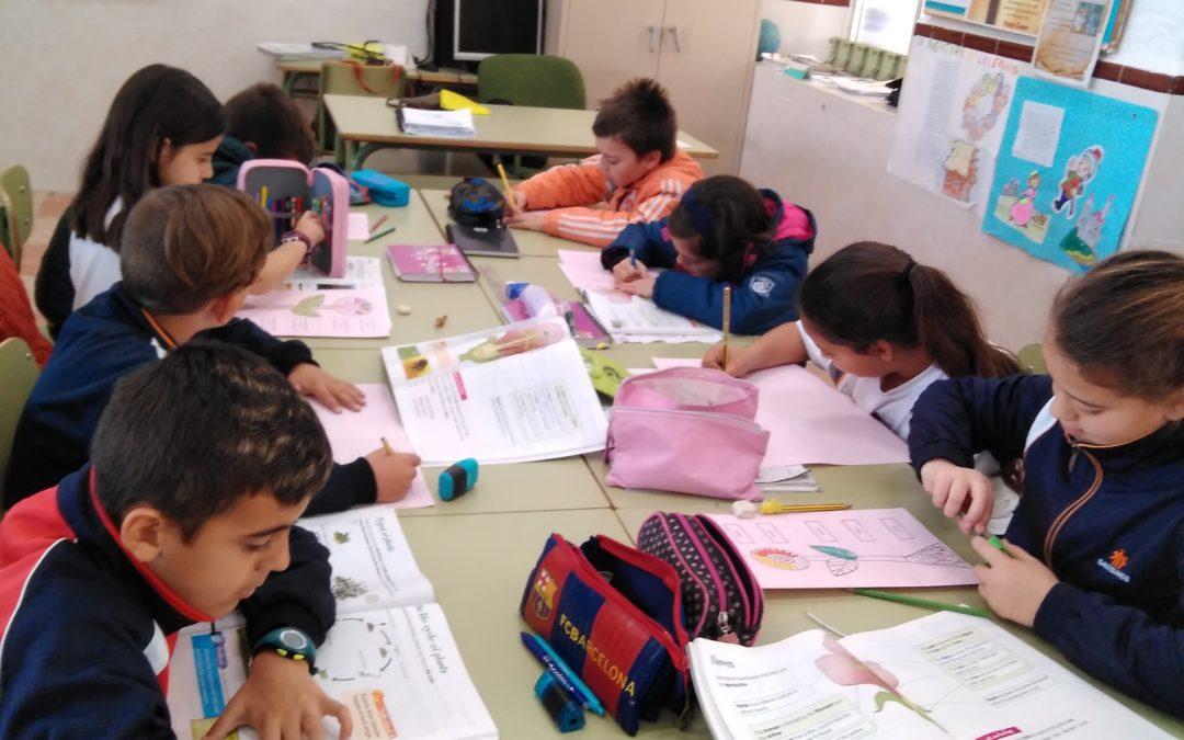BILINGUAL TEACHING TECHNIQUES: MIND MAPS y SCAFFOLDING